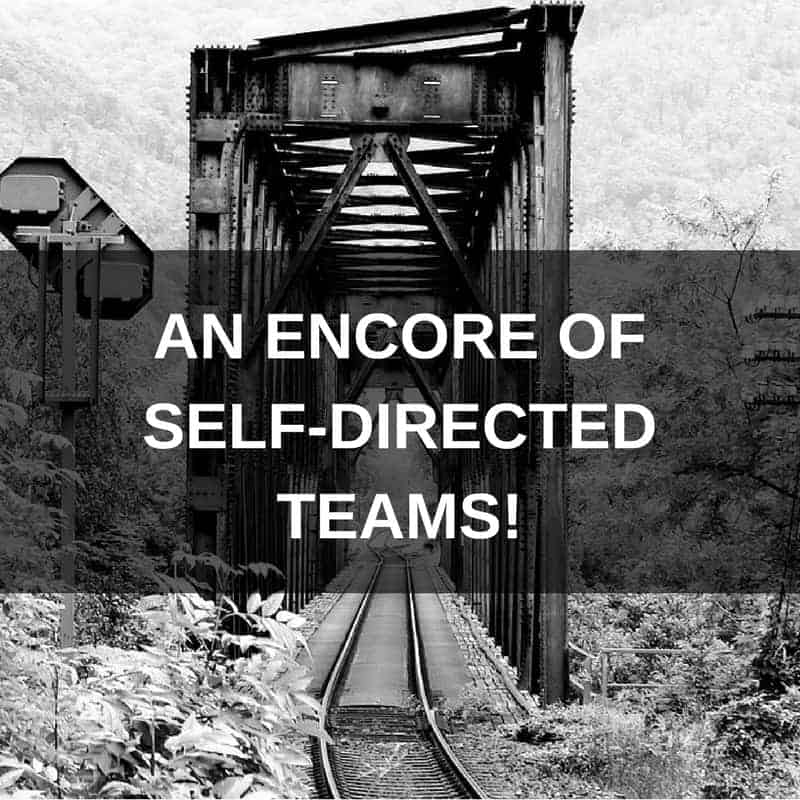 """self directed teams It seems that the idea of self-directed work teams is coming back into vogue i ran across this article recently about the companies that have embraced the practice it's called """"why self-managed teams are the future of business"""" and it's worth a read many years ago, one of the companies i."""