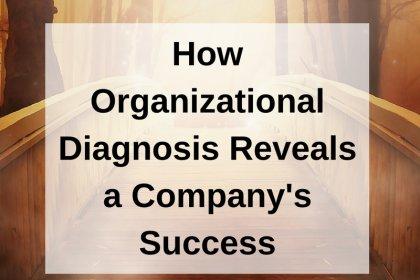 Dr. Jason Carthen: How Organizational Diagnosis Reveals a Company's Success